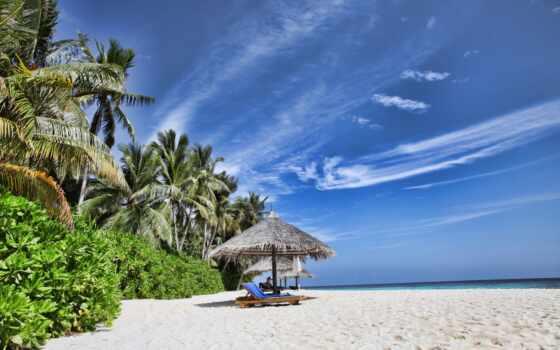 tropical, море, природа