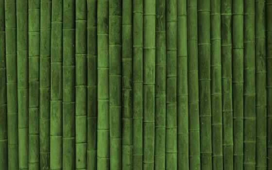 бамбук, текстуры, зелёный, текстура, ipad, картинка,