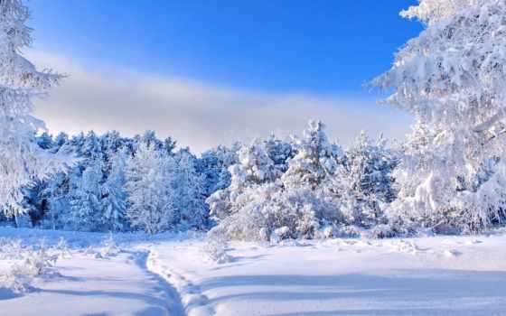 широкоформатные, winter, часть, jpeg, rutor, торрент, разное,