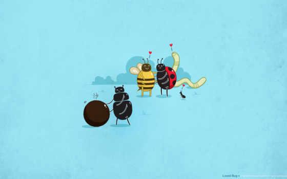 подстава, жучки, пара, пары, жуки, любовь, картинка, имеет, горизонтали,