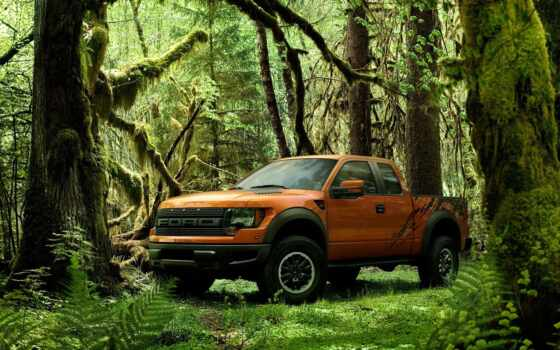 ford, raptor, jungle