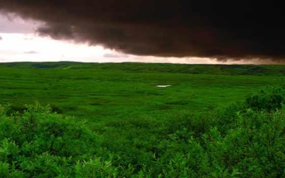 облака, буря, зелёный, трава, красивые, поле, катаклизмов,