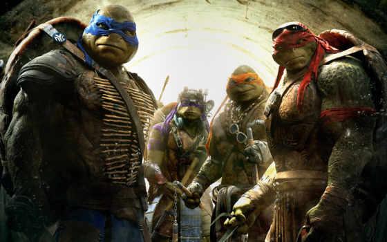 ninja, turtles, teenage