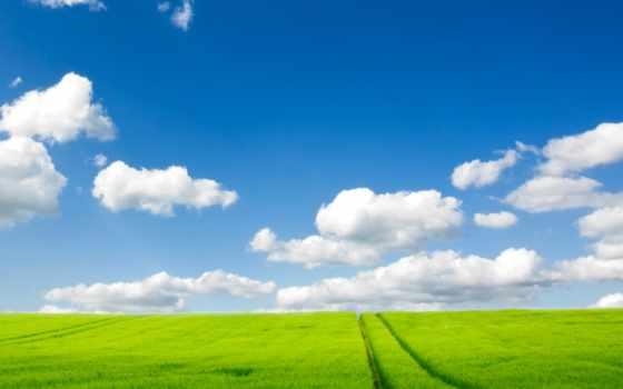 небо, дорога, трава