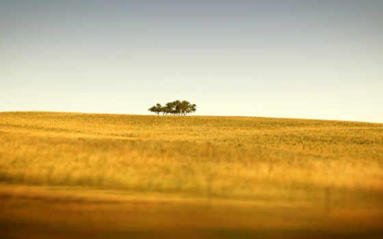 природа, оригинал, full, спина, desktop, national, geographic, ago,