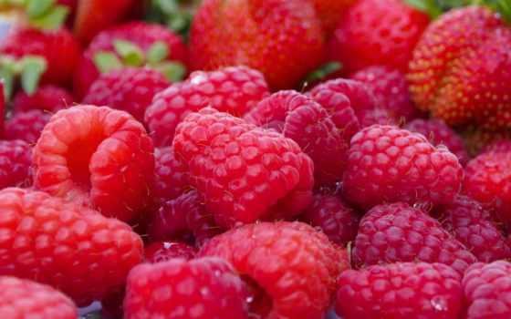 малина, ягода, красный , плод