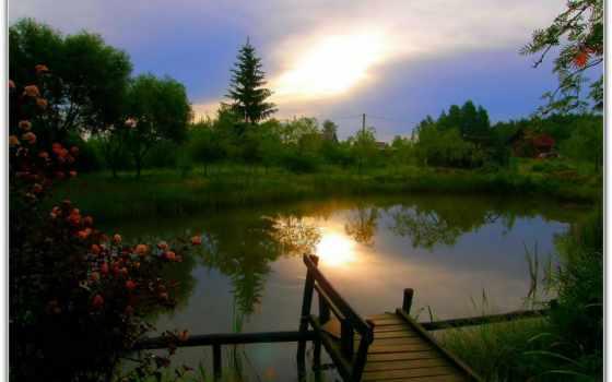 август, есть, love, creator, unsubscribe, природа, тихий, grieve, pevuchii, soft
