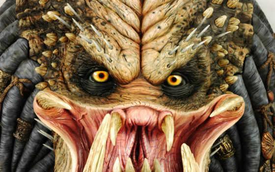 хищник, predator Фон № 6818 разрешение 1920x1200