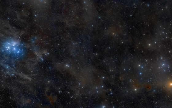 звезды, созвездие
