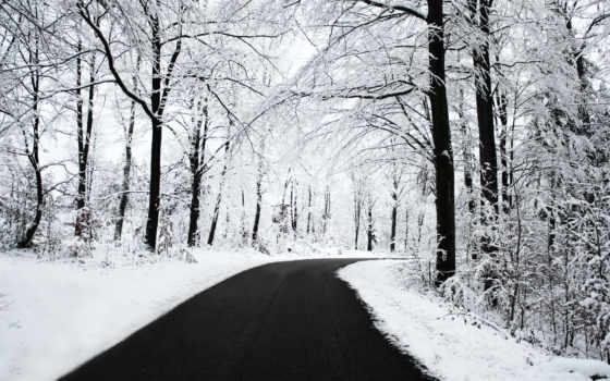 дорога, landscape, winter, дороги, лес, trees, автомобильная, снег, пейзажи -, лесу,