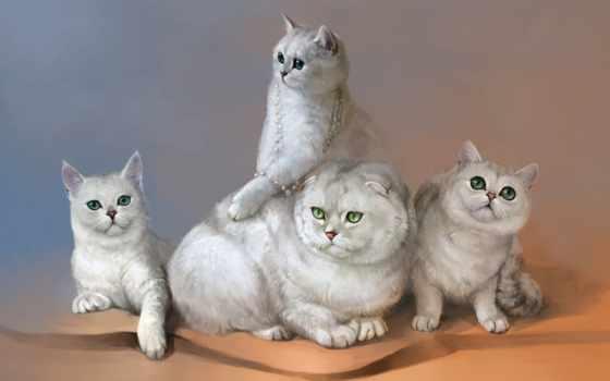 кошки, рисованное, art, рисованные, deviantart, энди, lloyd, cove, salamandra,