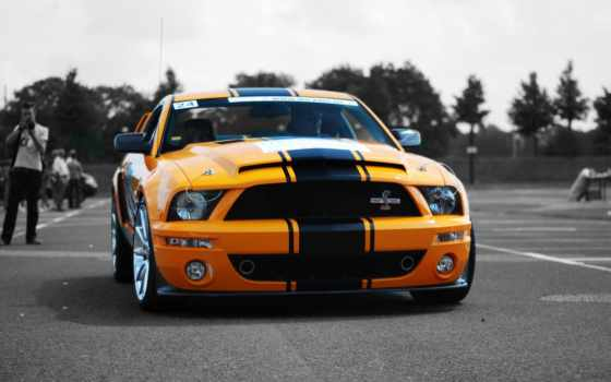 ford, mustang, shelby