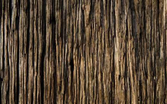 текстура, текстуры, дерева