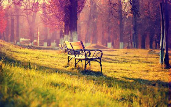 park, скамейка, скамейки, парке, осень, lantern, trees, свет, базе, высоком,