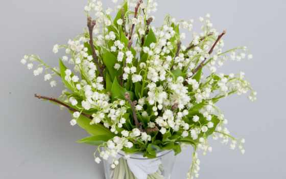 cvety, flowers, ландыши, white, долина, букет, lily, lilies,