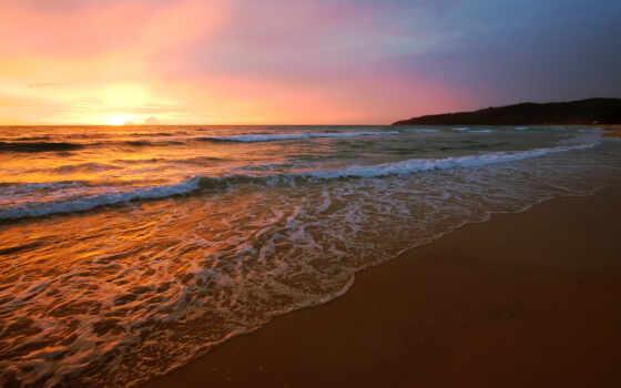 пляж, priroda, животное, гряда, blogopic, красивый, большой, samsing, песочница, soleil, цитата