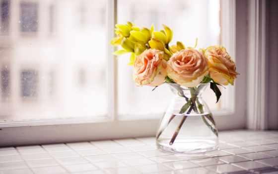 цветы, ваза, вазе