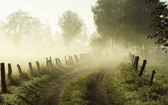 утро, рассвет, дорога