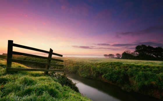 природа, роса, утро