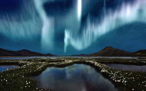 сияние, северное, звезды, небо, water, природа, болота, цветы,