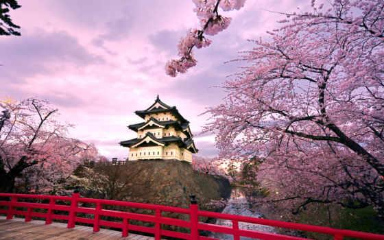 japanese, японии, castle, trees, Сакура, hirosaki, новогодние, tokio, небо, широкоформатные,