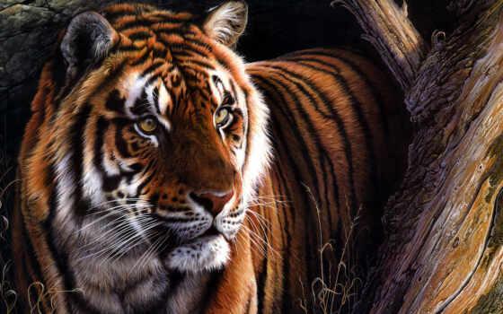тигр, smartphone, картинка, mobile,