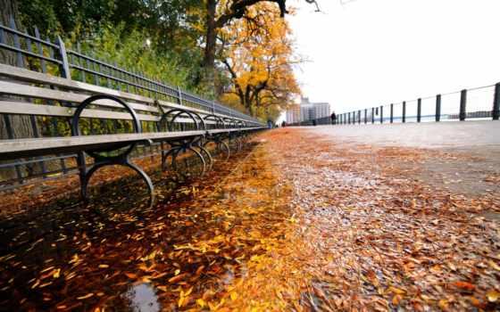 нью, york, park, new, листва, города, broadway, nyc, вечер,