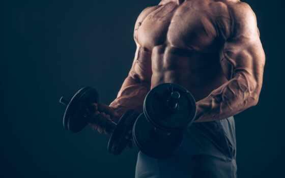 bodybuilding, bodymarket, фитнес, статьи, полезные,