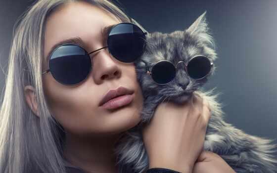 şəkillər, profil, устройство, indir, кот, mobile, cool, sekiller, jete, сделать