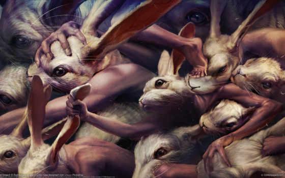 кролики, драка