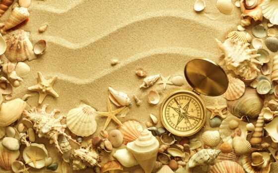 песок, раковины