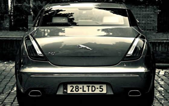изображение, jaguar, logo