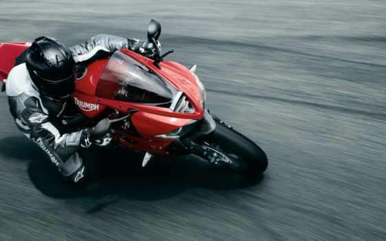 triumph, bike, мотоцикл
