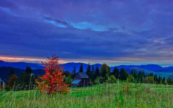 romania, природа, изображение, трава, desktop, free, небо, фото, тематика,