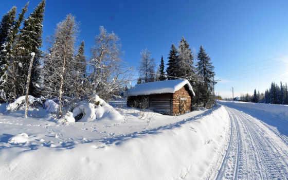 winter, trees, снег, природа, kartinik, free