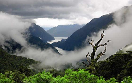 новой, zealand, новая, зеландии, пейзажи -, западной, south,