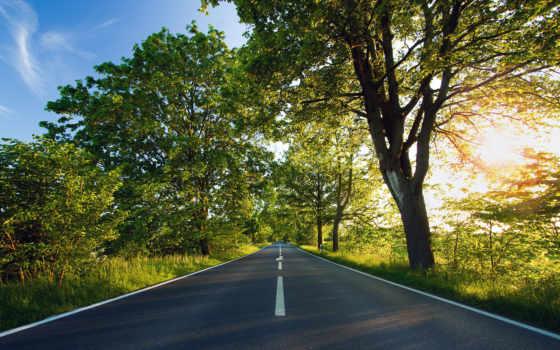 дорога, асфальт, svet, солнечный, деревя, дек,