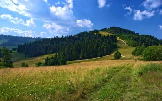 campo, природа, тропинка, hill, paisaje, landscapes, pintado, papel,