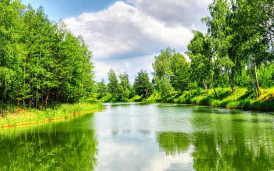 фотообои, природа, водопады, reki, река, природы, озера, пейзажи -, купить, лесу, landscape,