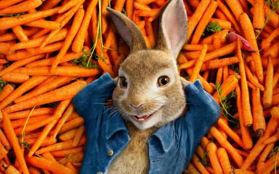 peter, кролик, сниматься, trailer, runaway, коллекция, комедия, exit