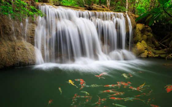 водопад, лес Фон № 6969 разрешение 1920x1080