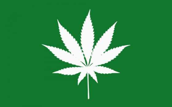 марихуана, зеленый