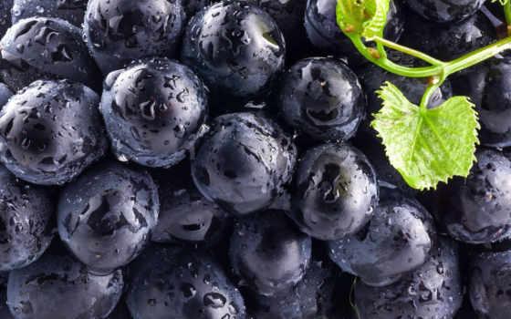 виноград, плоды, только