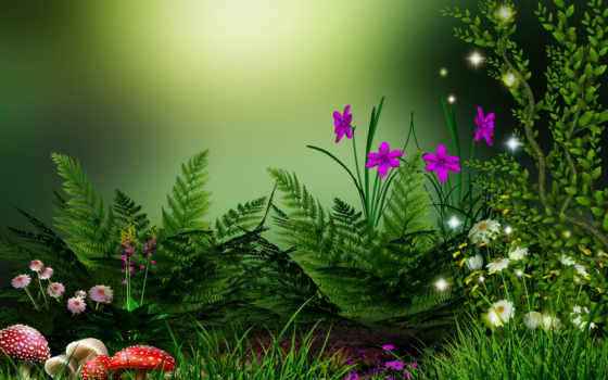 графика, природа, цветы, коллекция, грибы,