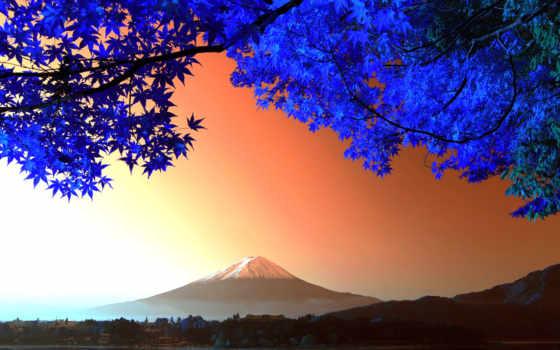 japanese, гора, фудзияма, дерево, осень, ветки, вулкан,