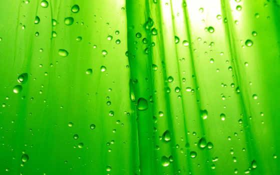зелёный, free, cool, desktop, resolution, коллекция, простота,