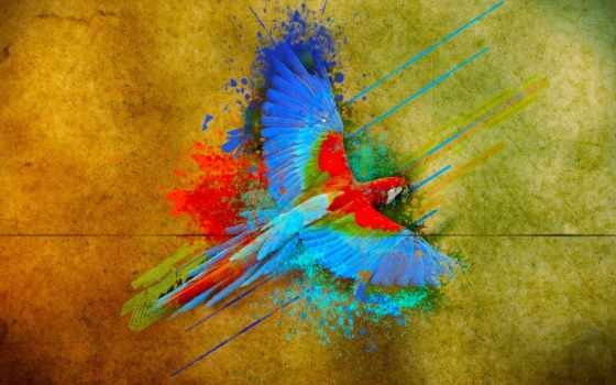 краска, animal, попугай, птица, blue, red, цвета, венок, волосы, fly, зелёный