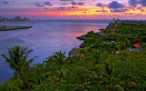 cuba, вечер, залив, пальмы,