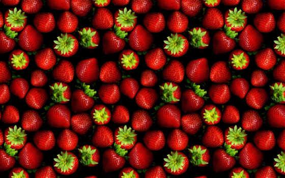 клубника, сорт, candy, красивый, secret, ягода