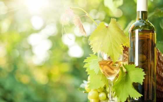 вино, blanco, del, uvas, fotos, вид, que, vidrio,